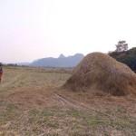 Dschungeljagd nach Kletterfels erfolgreich gewonnen, ab nach Hause das Beerlao wartet…